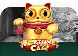 slot fortune cat